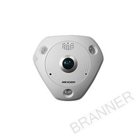 HIK/12MP/FISHEYE1.98MM/15M IR/IP66/IK10